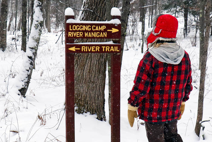 A person looking at a trail sign in a snowy forest.